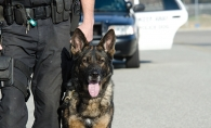 An Edina Police Department K-9 officer.