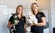 Ashley Mailatyar and Sharon Nguyen, the founders of Haute Dog Spa