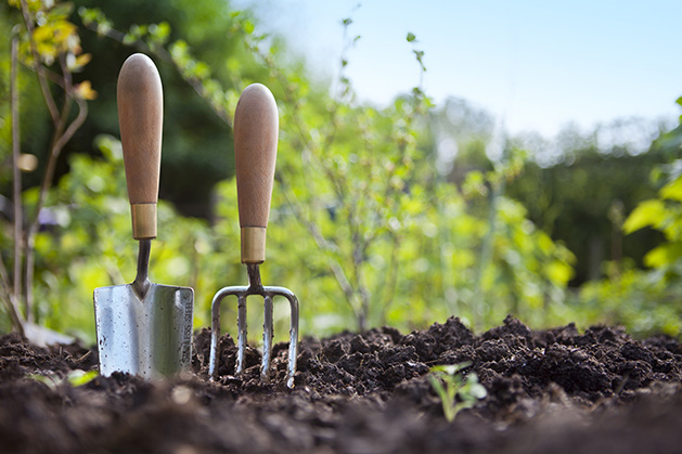 Two garden tools stand in the dirt during outdoor spring cleaning