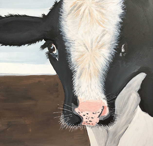 A cow portrait by Jackie Dummer